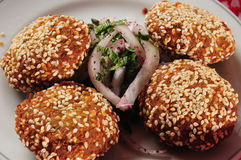 Falafel. Royalty Free Stock Photos