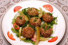 Falafel. Vegetarian food, lebanese cuisine Royalty Free Stock Images