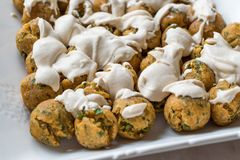 Falafel Balls with Hummus Sauce in Rectangular Plate. royalty free stock photography