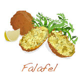 Falafel balls isolated on a white background Stock Photos