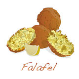 Falafel balls isolated on a white background Royalty Free Stock Photo