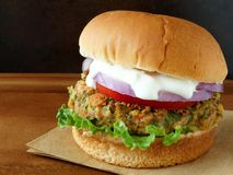 Falafel burger with tzatziki sauce Stock Photography