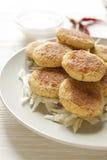 Falafel casalingo Immagini Stock