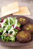 Falafel with pita bread and salad Stock Image