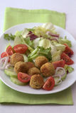 Falafel plate Royalty Free Stock Photo