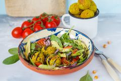 Falafel salad with fresh vegetables, sprouts and hemp dressing Stock Images