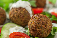 Falafel on salad leaves Royalty Free Stock Photography