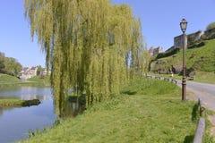 Falaise的池塘在法国 库存照片