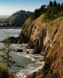 Falaise côtière de Washington Photographie stock libre de droits