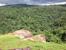 Falaise des montagnes Image libre de droits