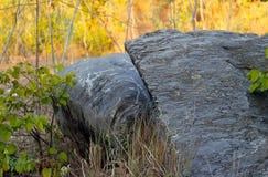 Falaise en pierre, colline de rocher, beaux milieux de nature Image stock