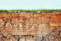 Falaise - saleté et herbe d'argile photo libre de droits