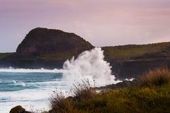 Falaise sur l'île du pico, acores, Portugal Photo libre de droits