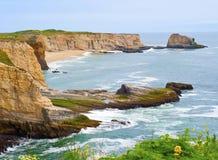 Falaises de côte de la Californie avec les ondes tombantes en panne Images stock