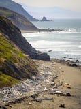Falaises de côte de l'Orégon, l'océan pacifique Image stock