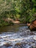 Falaises de grès en parc national de Gaujas, Lettonie Image stock
