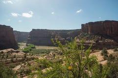 Falaises de roche dans le canyon de Chelly photos libres de droits