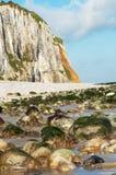 Falaises en Normandie Images stock