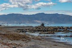Falaises et roches sur la côte sud de Wellington image stock