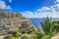 Falaises près de grotte bleue, Malte photos libres de droits