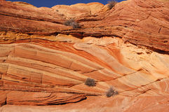 Falaises région sauvage, Arizona, Etats-Unis de Paria Canyon-Vermilion Photographie stock libre de droits