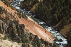 Falaises rouges et jaunes de la rivière Yellowstone, Wyoming Photographie stock libre de droits