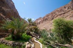 Falaj Of Wadi Al Arbeieen Oman Stock Images