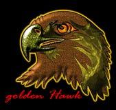 Falcão dourado Imagem de Stock Royalty Free