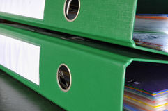 falcówki green Fotografia Stock