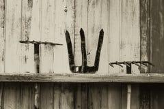 Falce e pitchfork del rastrello strumento di agricoltura dell'azienda agricola sulla parete di legno Fotografia Stock