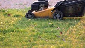Falciatrice da giardino nel moto archivi video