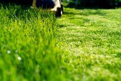 Falciatrice da giardino sull'erba verde immagine stock