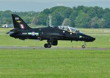 Falco di RAF Fotografie Stock Libere da Diritti