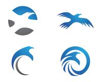 Falco Eagle Bird Logo Template Immagine Stock