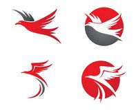 Falco Eagle Bird Logo Template Immagini Stock