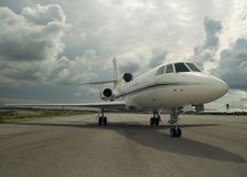 Falcon 50 Royalty Free Stock Photos