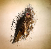 Falcon, abstract animal concept. Can be used for wallpaper, canvas print, decoration, banner, t-shirt graphic, advertising Royalty Free Stock Photos