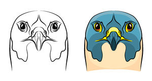 Falcon - coloring book Royalty Free Stock Photography