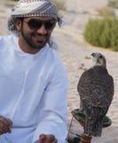 Falcon, falconry, falconer. A Arab falconer communicating with his falcon in Dubai royalty free stock photos
