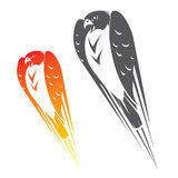 Falcon in flight. Vector illustration of falcon symbol Stock Images