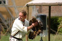 Falcon, hawk trainer. Royalty Free Stock Photo