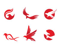Falcon Logo Template Royalty Free Stock Photography