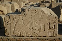 Falcon. Relief with a falcon and hieroglyphes Royalty Free Stock Image