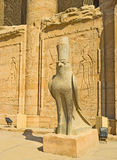 The falcon. The stone falcon symbolises the ancient God Horus and guards the entrance to his Temple in Edfu, Egypt Royalty Free Stock Photography