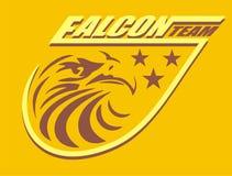 Falcon team. Consisting of eagle falcon head t-shirt graphic design team says vector illustration
