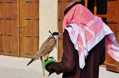 A falconeer with his falcon in Dubai. DUBAI, UNITED ARAB EMIRATES --22 DECEMBER 2014-- A falconeer with his falcon in Dubai. Falconry has been traditionally Stock Photo
