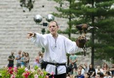 falconer royalty-vrije stock fotografie