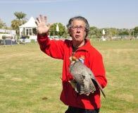 falconer royalty-vrije stock afbeeldingen