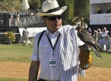 falconer stock foto's
