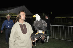 Falconer with American Bald Eagle Stock Photography